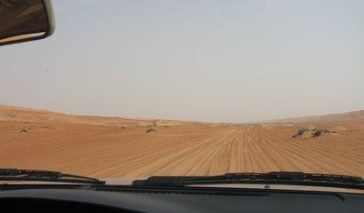 砂地を走る.jpg